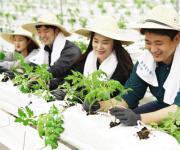 협력 농가 돕기 봉사