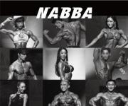 나바코리아 '2019 나바 WFF 아시아 오픈 챔피언십' 14일 개최