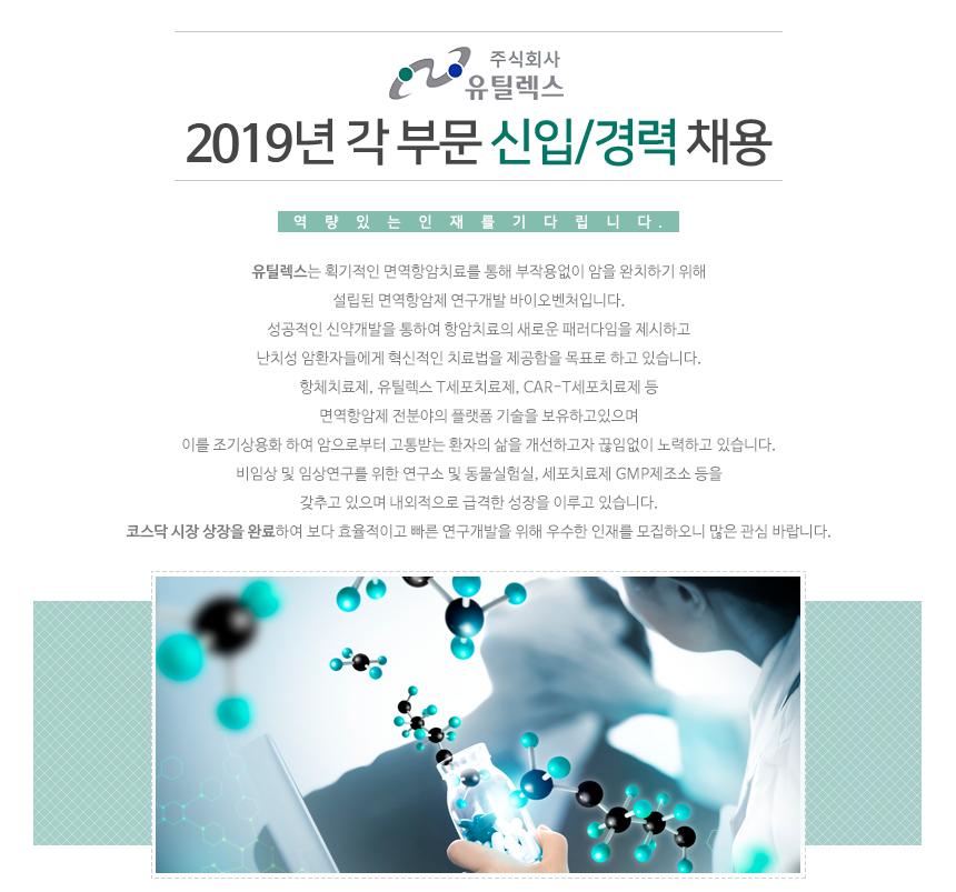 2019년 각 부문 신입/경력 채용