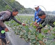 화천군, 외국인 계절 근로자 대상 확대…농번기 인력난 해소