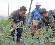 일꾼 사라진 농어촌…외국인 계절 근로자 3년 새 28배 껑충