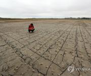 '봄 가뭄' 피해 확산에 농작물재해보험금 청구 급증